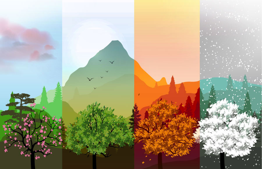 Pneu 4 saisons (toutes saisons)