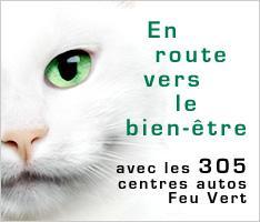 Ancienne publicité Feu Vert avec un vrai chat